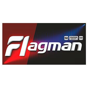 Аккумулятор для грузовиков Flagman 245H52R (220) евро фото 340x340